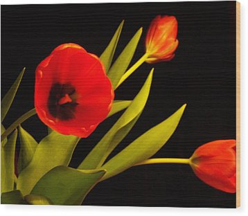Wood Print featuring the photograph Tulip Arrangement 2 by Peter Mooyman