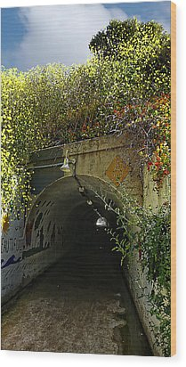 Tunnel At Crystal Cove Wood Print by Ron Regalado