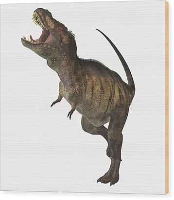 Tyrannosaurus Rex Wood Print by Corey Ford
