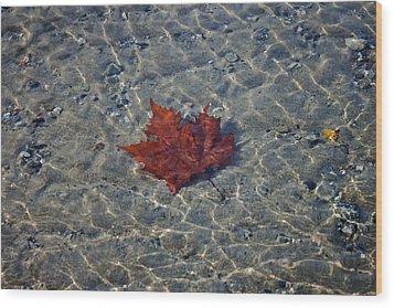 Under Water Wood Print by Joana Kruse