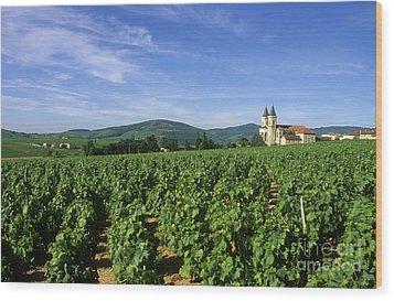 Vineyard. Regnie-durette. Beaujolais Wine Growing Area. Departement Rhone. Region Rhone-alpes. Franc Wood Print by Bernard Jaubert
