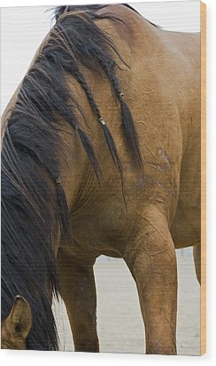 Wood Print featuring the photograph War Horse by Lorraine Devon Wilke