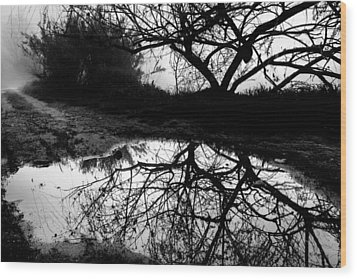 Water Mirror Wood Print by Edgar Laureano
