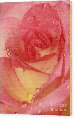Wet Rose Wood Print by Sabrina L Ryan