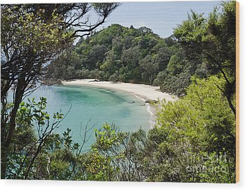 Whale Bay In New Zealand Wood Print by Yurix Sardinelly