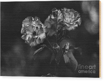 Wild Rose Wood Print by Dariusz Gudowicz