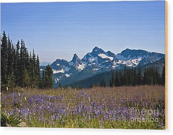 Wildflowers In The Cascades Wood Print by Ronald Lutz