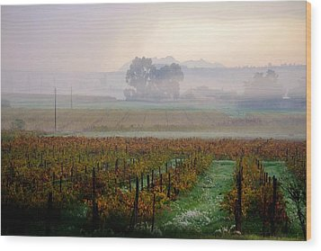 Wood Print featuring the photograph Wine Field by Werner Lehmann