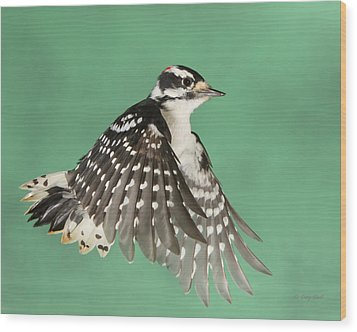 Wood Print featuring the photograph Wing Flaps Down by Gerry Sibell