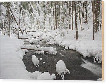 Winter Snow Along Still Creek In Mt Wood Print by Craig Tuttle