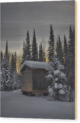 Winter Solitude Wood Print by Heather  Rivet