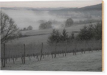 Winter Vineyard Wood Print by Jean Noren