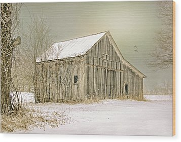 Wood Print featuring the photograph Winter's Barn by Mary Timman