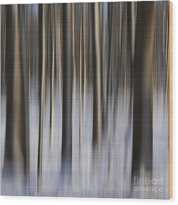 Woodland Fantasy Wood Print by Heiko Koehrer-Wagner