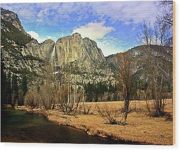 Yosemite National Park Wood Print by Luiz Felipe Castro