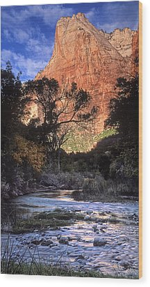 Zion National Park View Wood Print by Dave Mills