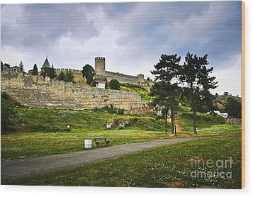 Kalemegdan Fortress In Belgrade Wood Print by Elena Elisseeva