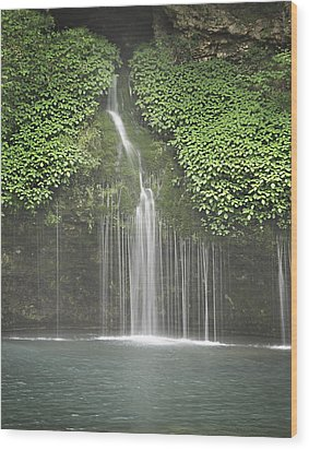 1004-1936 Natural Falls State Park 3 Wood Print by Randy Forrester