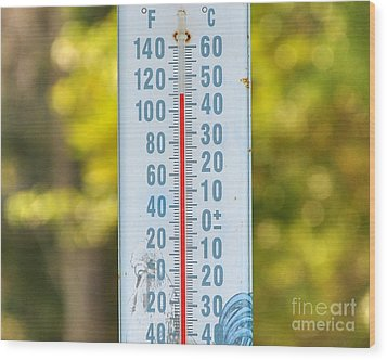 110 Degrees In The Shade Wood Print by Al Powell Photography USA