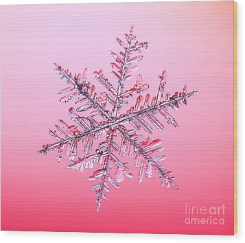 Snowflake Wood Print by Ted Kinsman