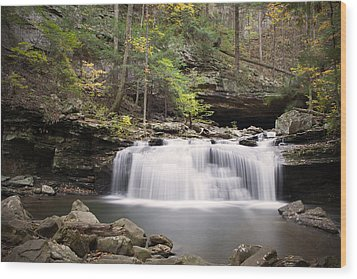 Waterfall Wood Print by David Troxel