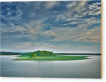 1206-9119 Arkansas River At Spadra Park  Wood Print by Randy Forrester