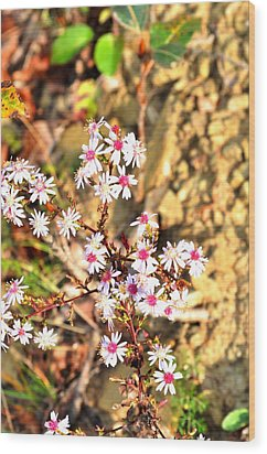 Wood Print featuring the photograph Flowers by Puzzles Shum