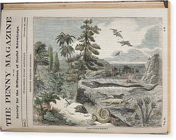 1833 Penny Magazine Extinct Animals Color Wood Print by Paul D Stewart