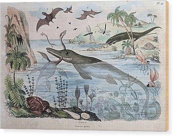 1834 Guerin Engraving 'extinct Animals Wood Print by Paul D Stewart