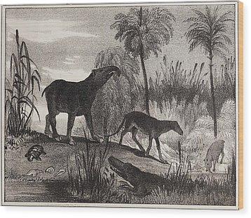 1837 Extinct Prehistoric Animals Paris Wood Print by Paul D Stewart