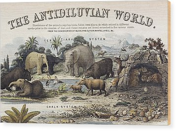 1849 The Antidiluvian World Crop Jurassic Wood Print by Paul D Stewart