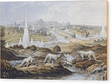 1854 Crystal Palace Dinosaurs By Baxter 1 Wood Print by Paul D Stewart