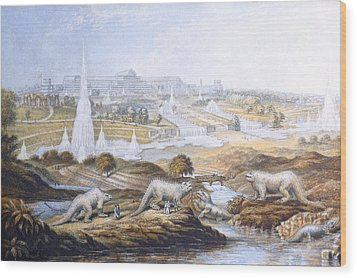 1854 Crystal Palace Dinosaurs By Baxter 2 Wood Print by Paul D Stewart