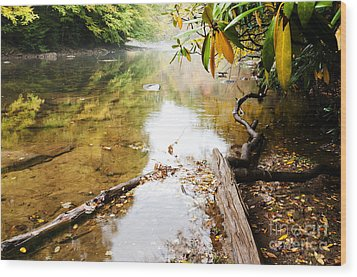 Fall Along Williams River Wood Print by Thomas R Fletcher