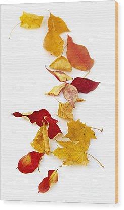 Autumn Leaves Wood Print by Elena Elisseeva