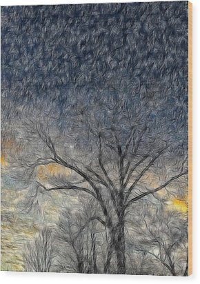 Bare Limbs Wood Print by Misty Blankenship