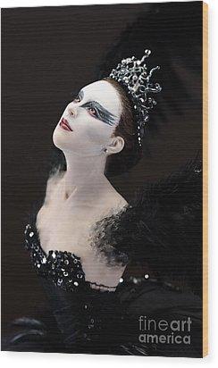Black Swan Wood Print by Vickie Arentz
