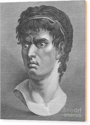 Brutus, Roman Politician Wood Print by Photo Researchers