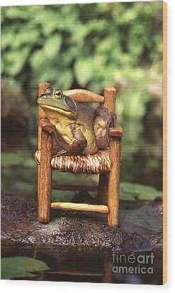 Bullfrog Wood Print by Kenneth H Thomas and Photo Researchers