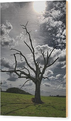 By The Light Of The Moon Wood Print by Jan Amiss Photography