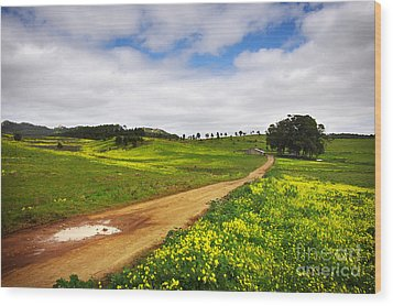 Countryside Landscape Wood Print by Carlos Caetano