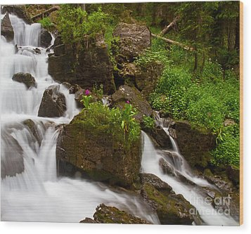 Crystal Cascades With Orbs Present Wood Print by Crystal Garner