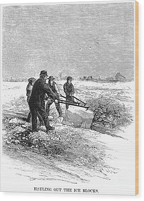 Cutting Ice, C1870 Wood Print by Granger