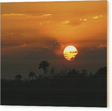 Wood Print featuring the photograph Florida Sunset by Jeanne Andrews