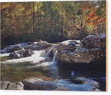 Wood Print featuring the photograph Great Smoky Mountains by Janice Spivey