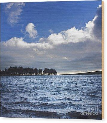 Lake In Auvergne Wood Print by Bernard Jaubert
