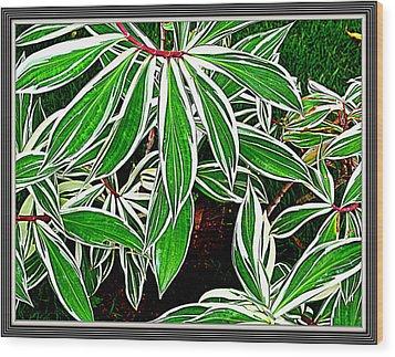 Leaves Wood Print by Anand Swaroop Manchiraju