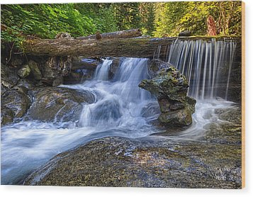 Lower Cascades Of Malachite Creek Wood Print by A A