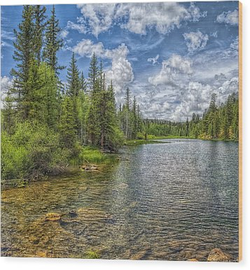 Mirror Lake Wood Print by Stephen Campbell