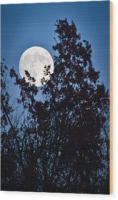 Moon Night Wood Print by Jiayin Ma